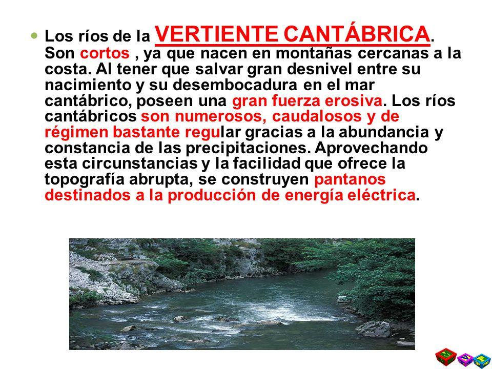 Los ríos de la VERTIENTE CANTÁBRICA.Son cortos, ya que nacen en montañas cercanas a la costa.