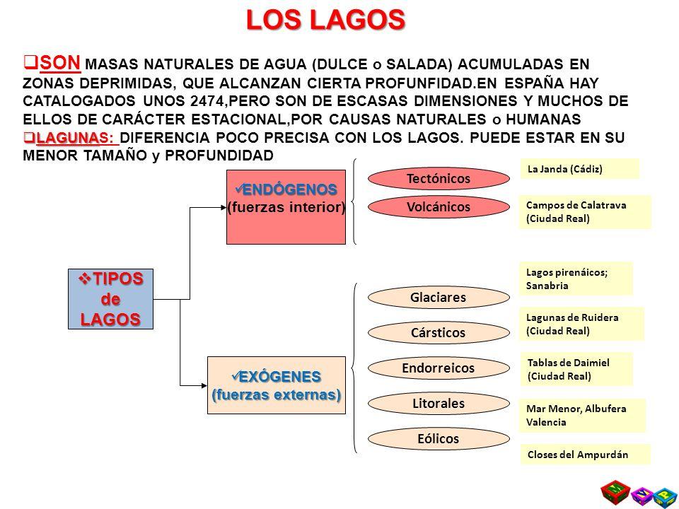 LOS LAGOS TIPOS TIPOSdeLAGOS ENDÓGENOS ENDÓGENOS (fuerzas interior) EXÓGENES EXÓGENES (fuerzas externas) Tectónicos Volcánicos Glaciares Cársticos Endorreicos Litorales Eólicos La Janda (Cádiz) Campos de Calatrava (Ciudad Real) Lagos pirenáicos; Sanabria Lagunas de Ruidera (Ciudad Real) Tablas de Daimiel (Ciudad Real) Mar Menor, Albufera Valencia Closes del Ampurdán Prof.