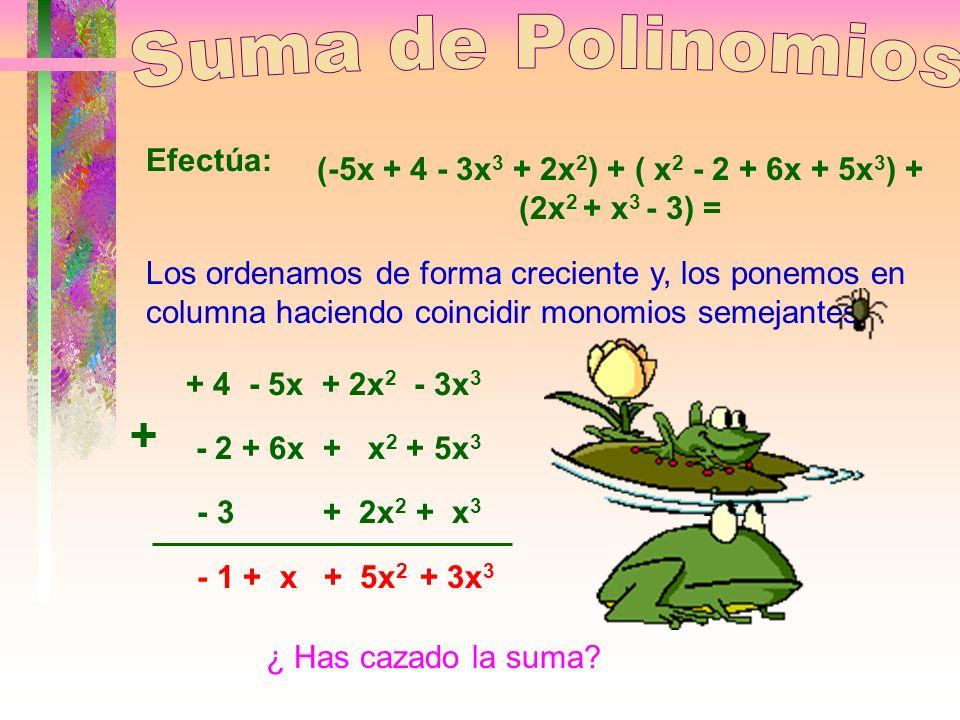 Para sumar polinomios, en primer lugar los ordenaremos de la misma forma(creciente o decreciente) y, a continuación los colocaremos en columnas hacien