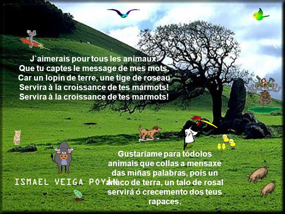 J`aimerais pour tous les animaux. Que tu captes le message de mes mots. Car un lopin de terre, une tige de roseau Servira à la croissance de tes marmo