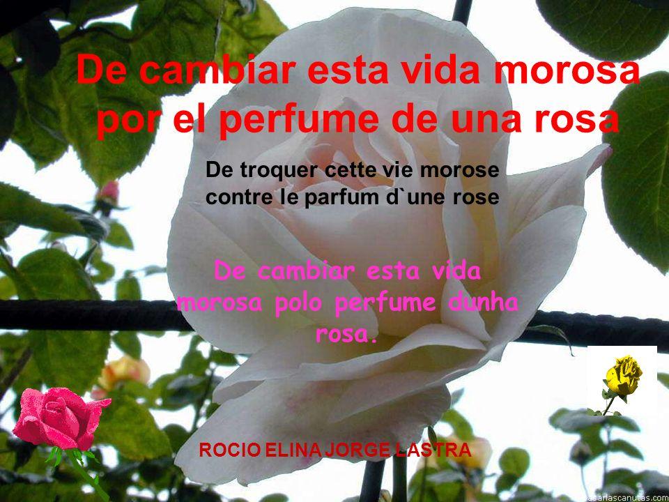De troquer cette vie morose contre le parfum d`une rose De cambiar esta vida morosa por el perfume de una rosa ROCIO ELINA JORGE LASTRA De cambiar est