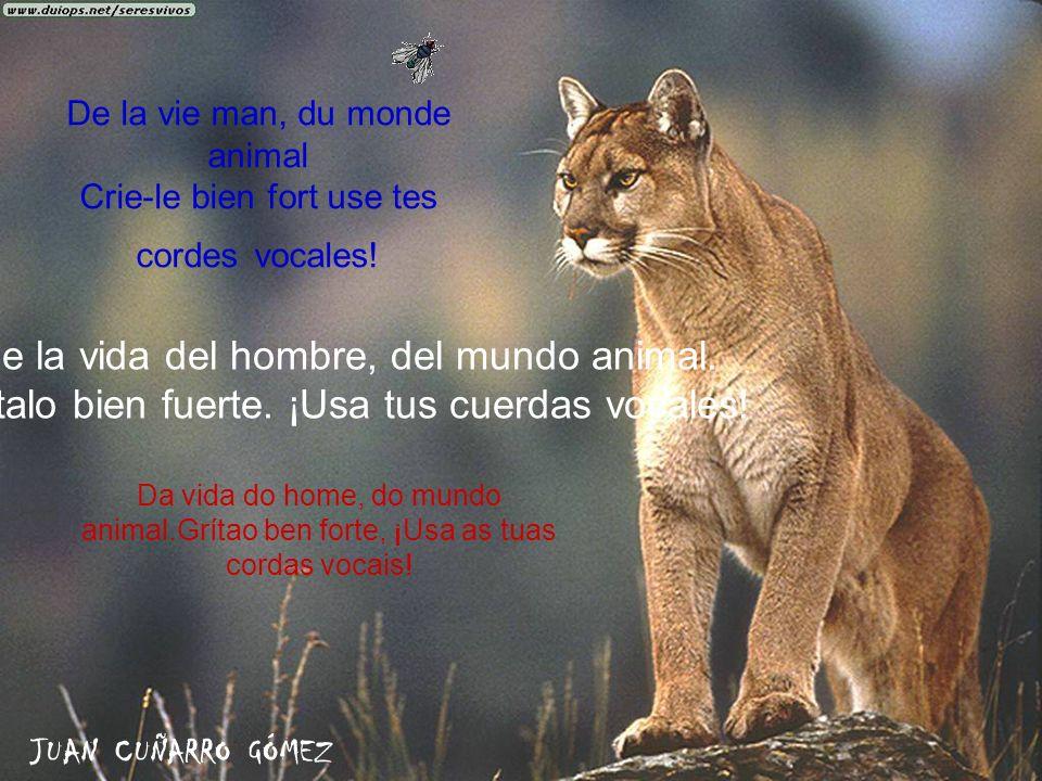 De la vie man, du monde animal Crie-le bien fort use tes cordes vocales! De la vida del hombre, del mundo animal. Grítalo bien fuerte. ¡Usa tus cuerda