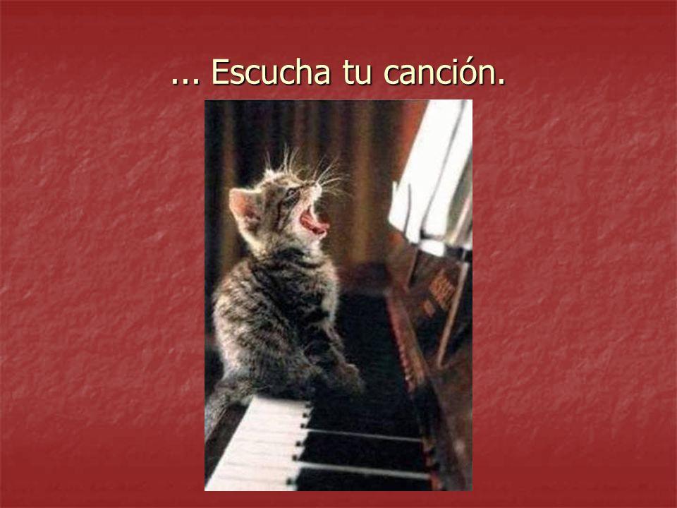 ... Escucha tu canción.