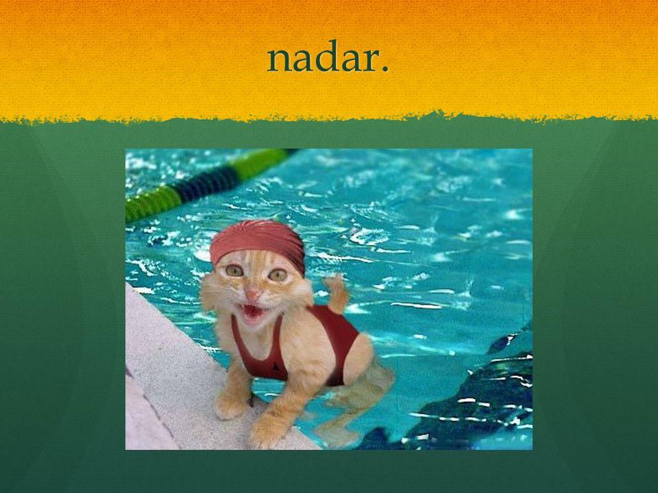 nadar.