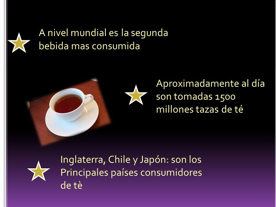 A nivel mundial es la segunda bebida mas consumida Aproximadamente al día son tomadas 1500 millones tazas de té Inglaterra, Chile y Japón: son los Pri