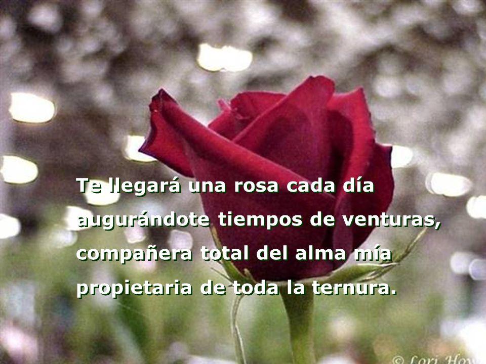 Te llegará una rosa cada día augurándote tiempos de venturas, compañera total del alma mía propietaria de toda la ternura.