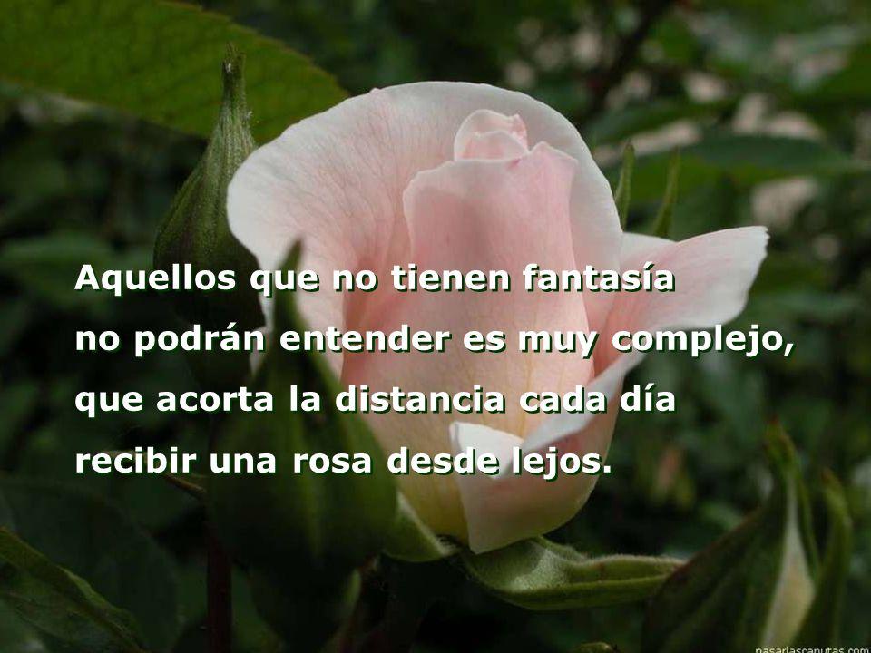 Aquellos que no tienen fantasía no podrán entender es muy complejo, que acorta la distancia cada día recibir una rosa desde lejos.
