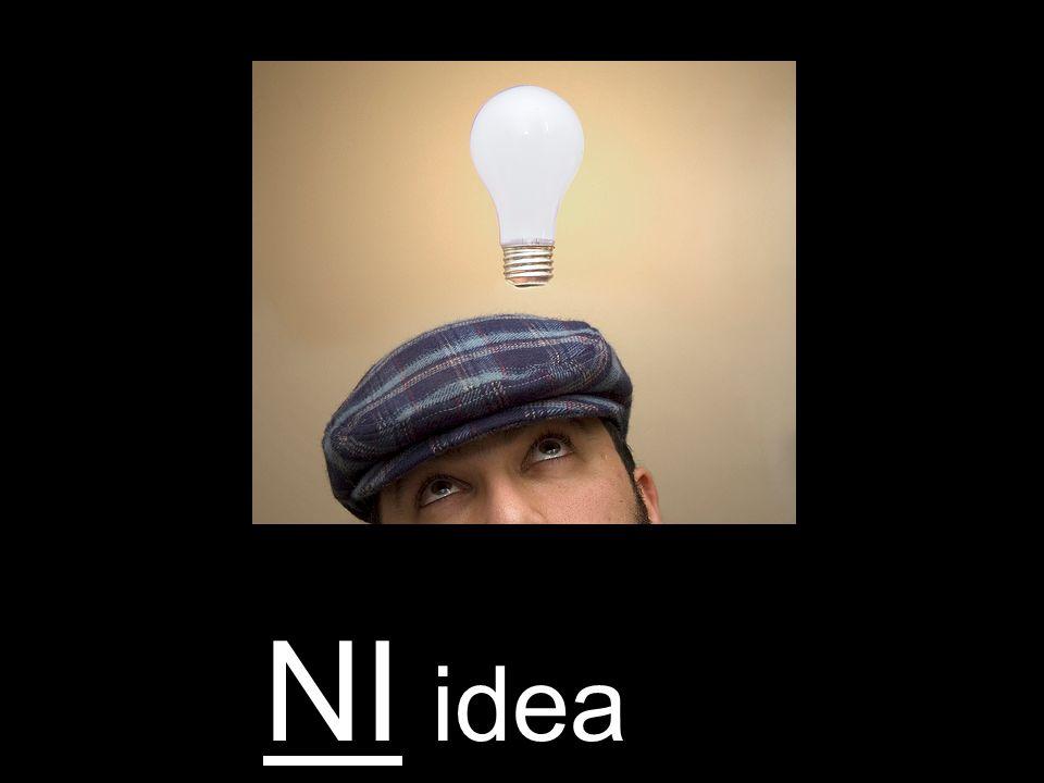 NI idea