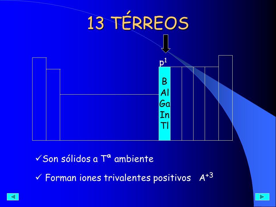 13 TÉRREOS p1p1 B Al Ga In Tl Son sólidos a Tª ambiente Forman iones trivalentes positivos A +3