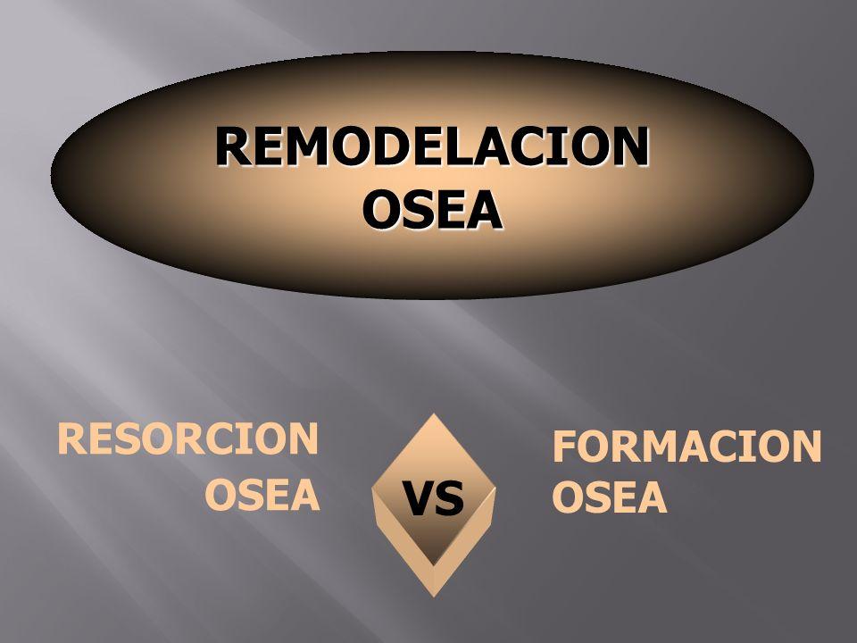 VS RESORCION OSEA FORMACION OSEA REMODELACION OSEA