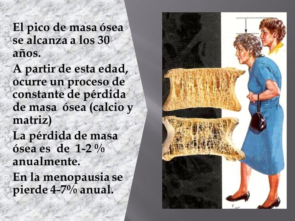 El pico de masa ósea se alcanza a los 30 años. A partir de esta edad, ocurre un proceso de constante de pérdida de masa ósea (calcio y matriz) La pérd