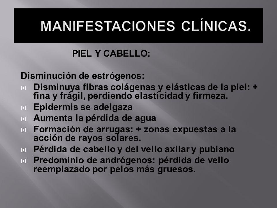 PIEL Y CABELLO: Disminución de estrógenos: Disminuya fibras colágenas y elásticas de la piel: + fina y frágil, perdiendo elasticidad y firmeza. Epider