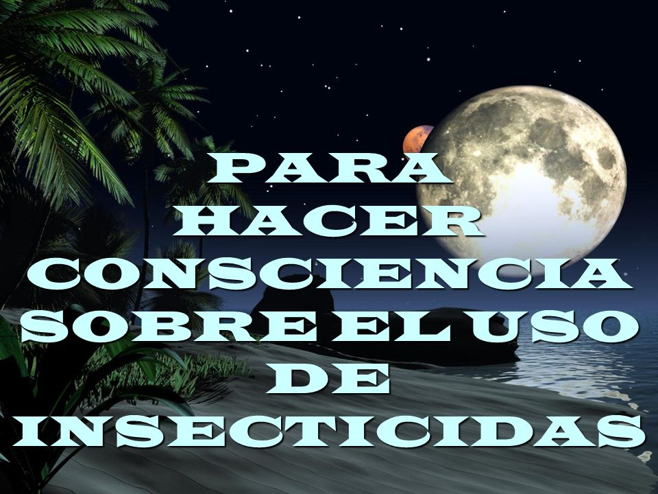 PARA HACER CONSCIENCIA SOBRE EL USO DE INSECTICIDAS