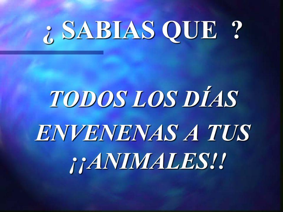 ¿ SABIAS QUE TODOS LOS DÍAS ENVENENAS A TUS ¡¡ANIMALES!!