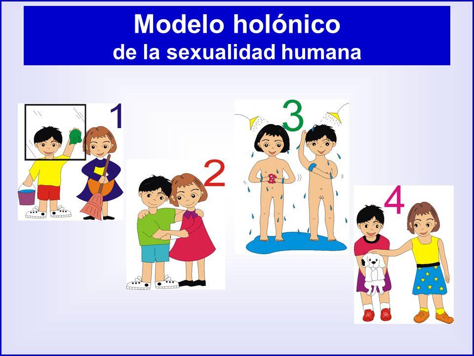 Modelo holónico de la sexualidad humana