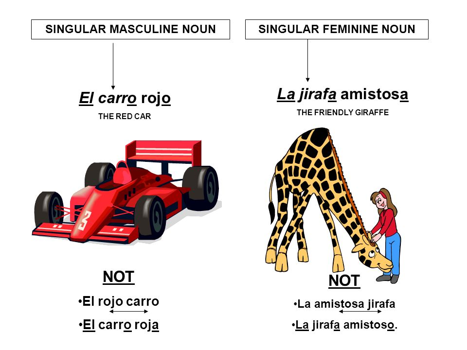 ¿GÉNERO~GENDER? Femenino or masculino? FEMININE OR MASCULINE Generally: most nouns ending in –o are masculine most nouns ending in –a are feminine. Ex