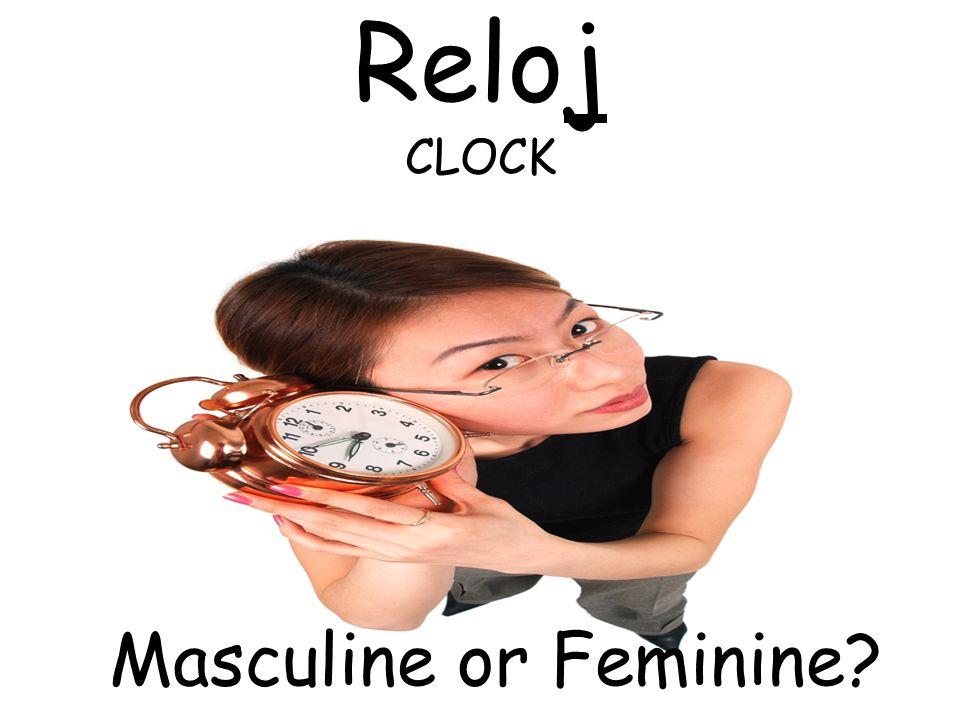 VIAJE TRIP Masculine or Feminine?