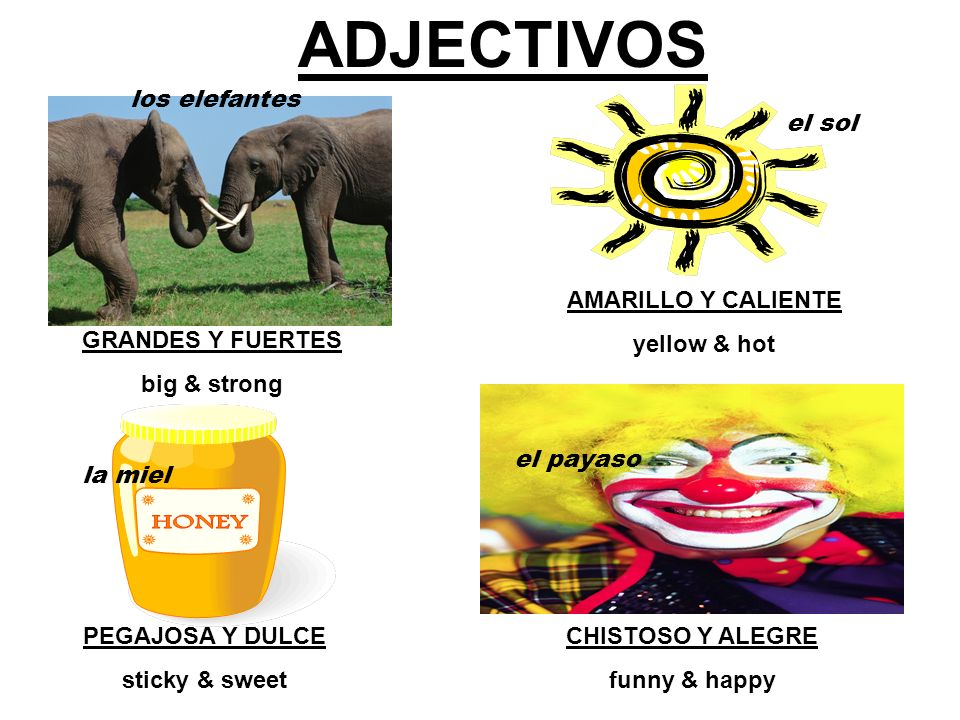 SO… whats an ADJECTIVO? Los adjectivos son palabras que describen o modifican un sustantivo. (una persona, lugar, cosa, o idea). ADJECTIVES ARE WORDS