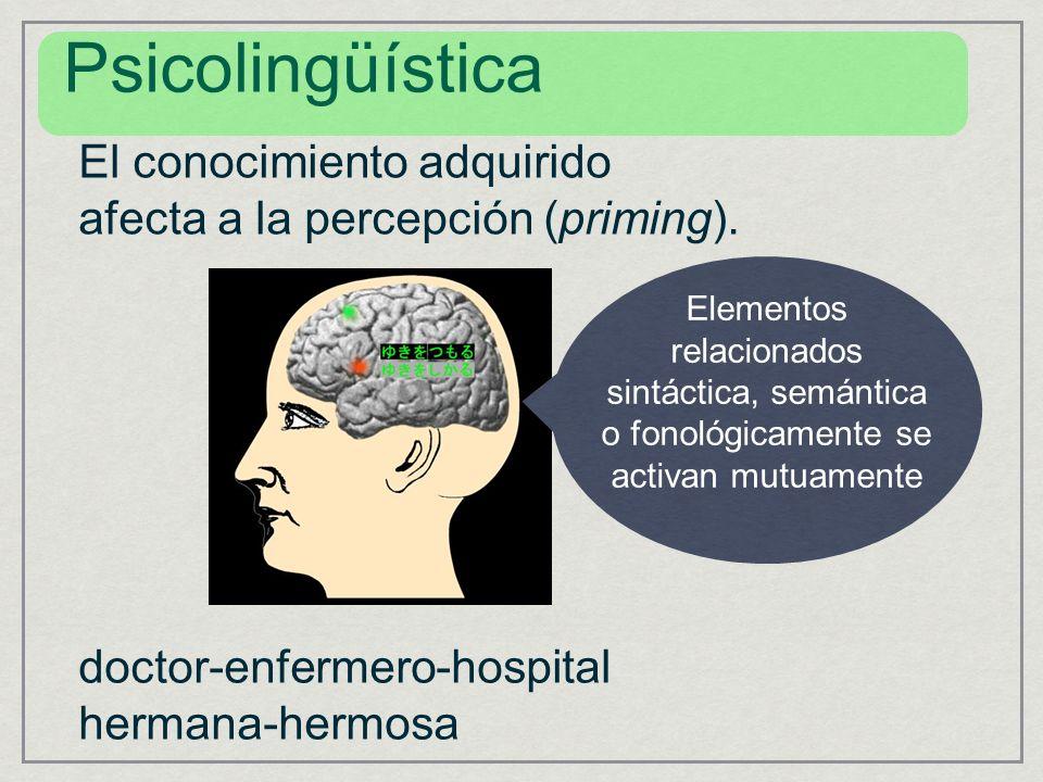 El conocimiento adquirido afecta a la percepción (priming). Elementos relacionados sintáctica, semántica o fonológicamente se activan mutuamente Psico