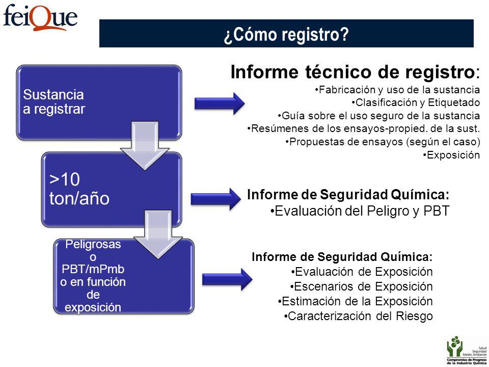 ¿Cómo registro? Sustancia a registrar >10 ton/año Peligrosas o PBT/mPmb o en función de exposición Informe técnico de registro: Fabricación y uso de l