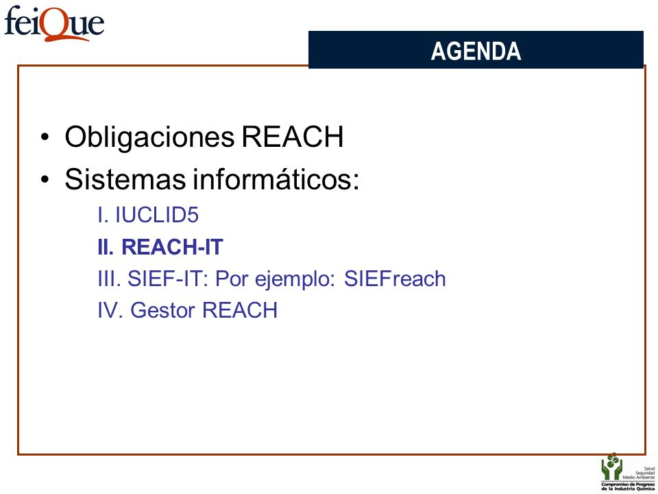 AGENDA Obligaciones REACH Sistemas informáticos: I. IUCLID5 II. REACH-IT III. SIEF-IT: Por ejemplo: SIEFreach IV. Gestor REACH