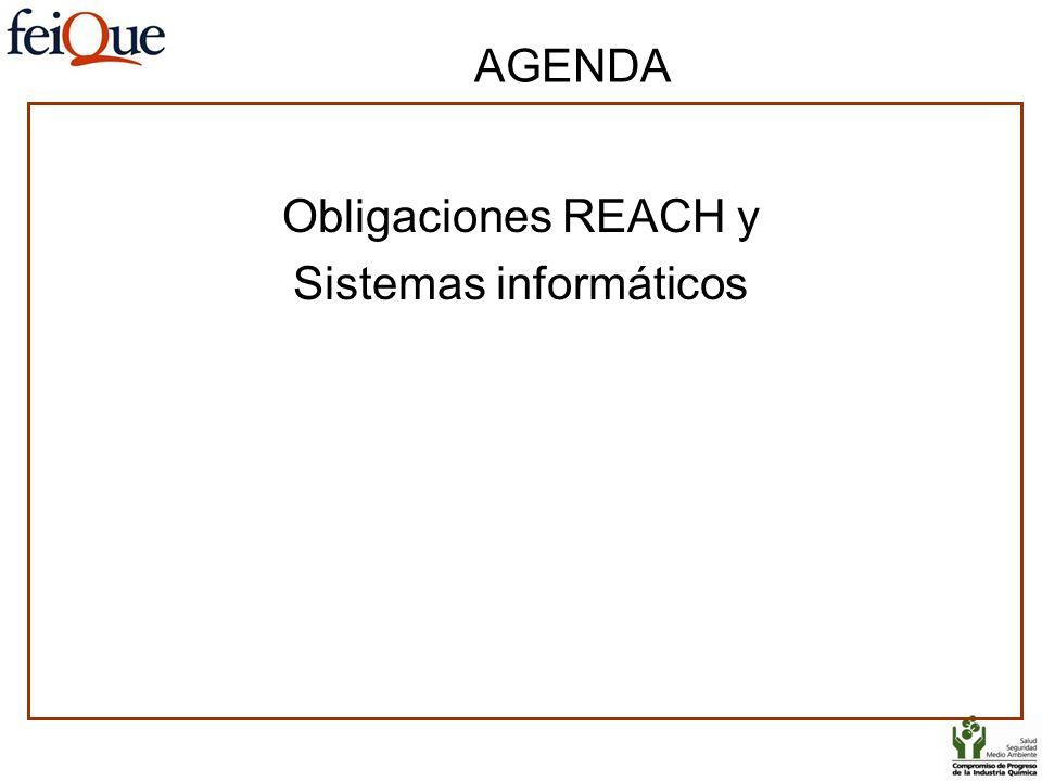 AGENDA Obligaciones REACH y Sistemas informáticos