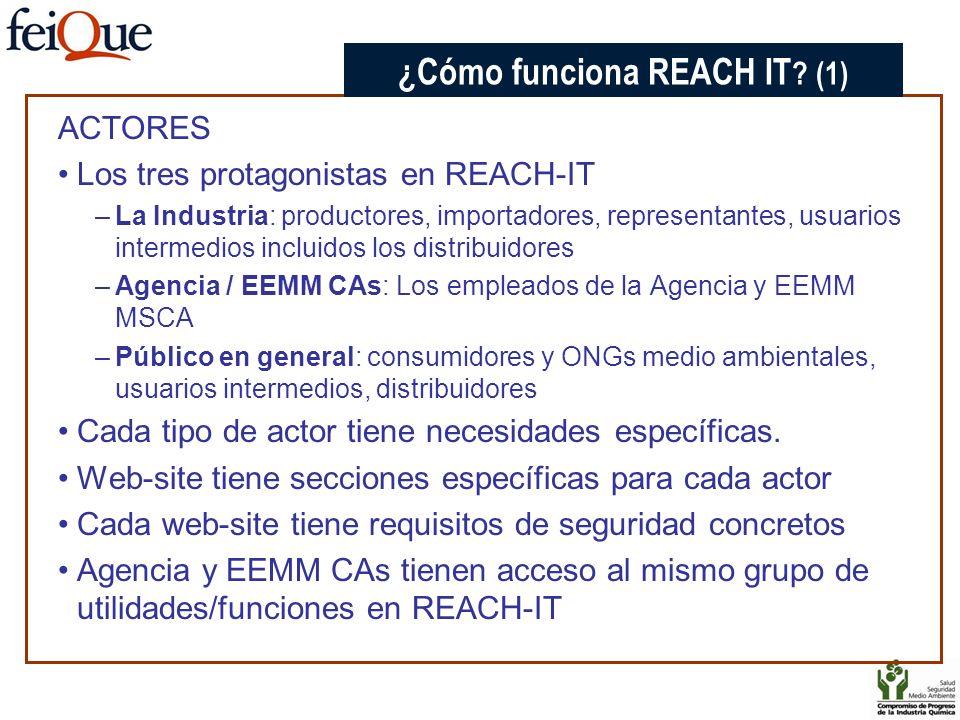 ACTORES Los tres protagonistas en REACH-IT –La Industria: productores, importadores, representantes, usuarios intermedios incluidos los distribuidores