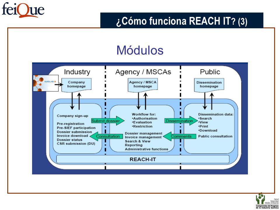 Módulos CHAPTER 3 ¿Cómo funciona REACH IT ? (3)