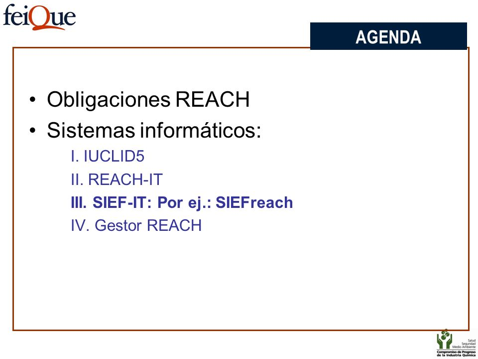 AGENDA Obligaciones REACH Sistemas informáticos: I. IUCLID5 II. REACH-IT III. SIEF-IT: Por ej.: SIEFreach IV. Gestor REACH