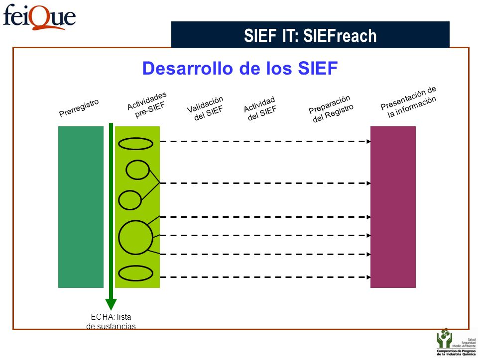 Desarrollo de los SIEF Prerregistro Actividades pre-SIEF Presentación de la información Validación del SIEF Actividad del SIEF Preparación del Registr