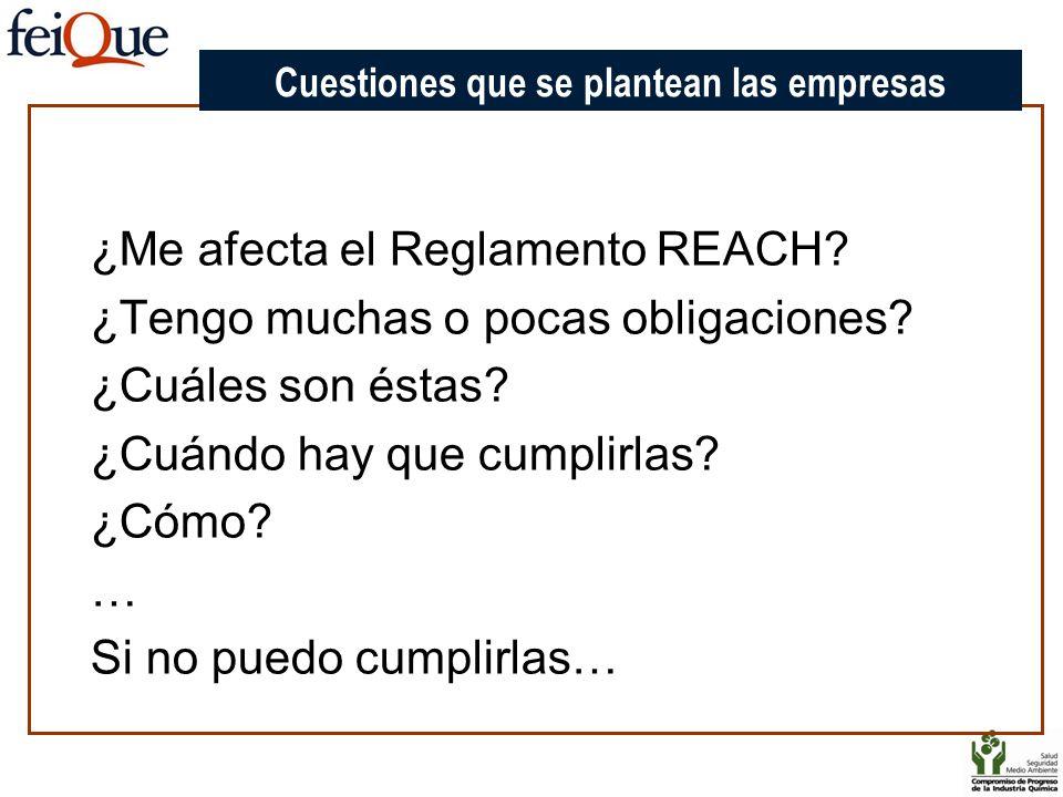 Cuestiones que se plantean las empresas ¿Me afecta el Reglamento REACH? ¿Tengo muchas o pocas obligaciones? ¿Cuáles son éstas? ¿Cuándo hay que cumplir