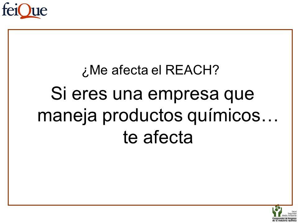 ¿Me afecta el REACH? Si eres una empresa que maneja productos químicos… te afecta