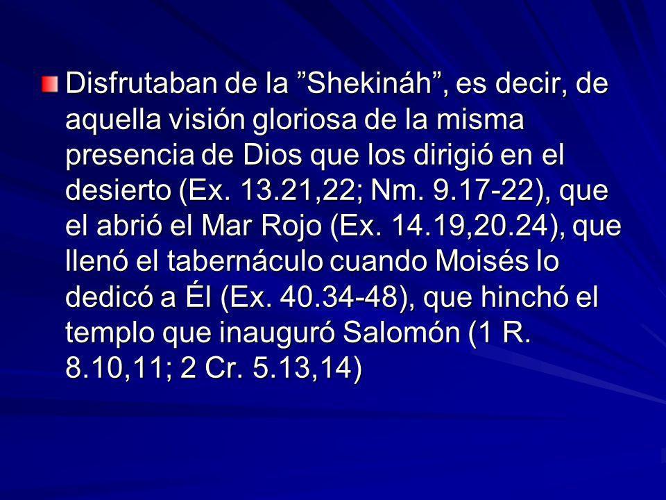 Disfrutaban de la Shekináh, es decir, de aquella visión gloriosa de la misma presencia de Dios que los dirigió en el desierto (Ex.