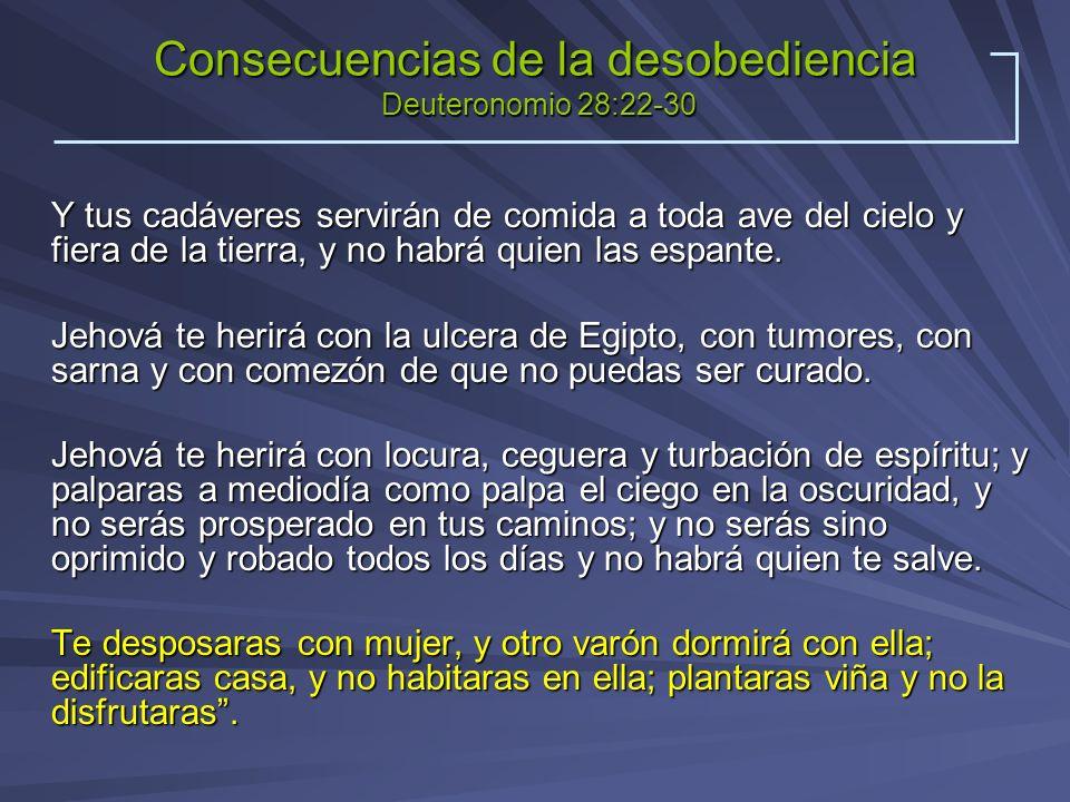 Consecuencias de la desobediencia Deuteronomio 28:22-30 Y tus cadáveres servirán de comida a toda ave del cielo y fiera de la tierra, y no habrá quien