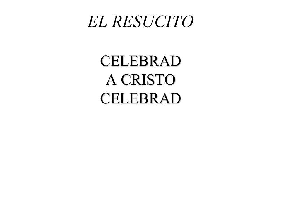 EL RESUCITO CELEBRAD A CRISTO CELEBRAD