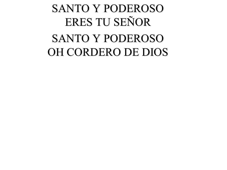 MANDA SEÑOR FUEGO DEL CIELO UN NUEVO DENUEDO Y MAS SANTIDAD /// MANDA SEÑOR ///