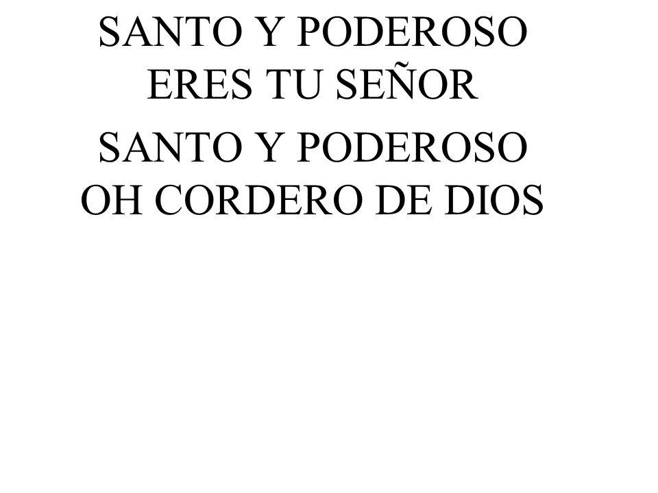 SANTO Y PODEROSO ERES TU SEÑOR SANTO Y PODEROSO OH CORDERO DE DIOS