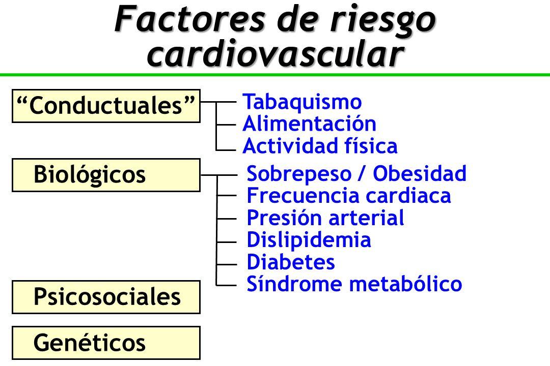 Tabaquismo Alimentación Actividad física Conductuales Biológicos Sobrepeso / Obesidad Frecuencia cardiaca Presión arterial Dislipidemia Diabetes Síndrome metabólico Psicosociales Genéticos Factores de riesgo cardiovascular