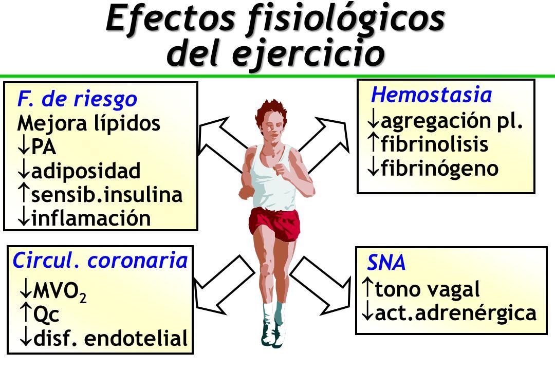 Mejora lípidos PA adiposidad sensib.insulina inflamación F.