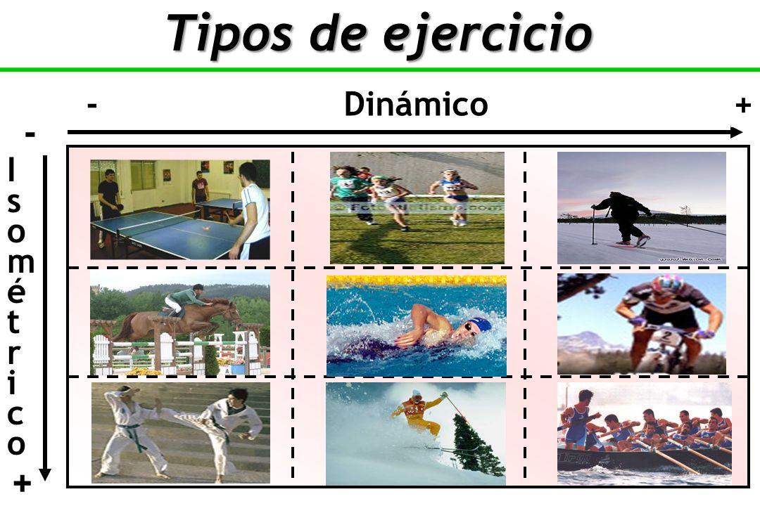 - Dinámico + IsométricoIsométrico - + Tipos de ejercicio