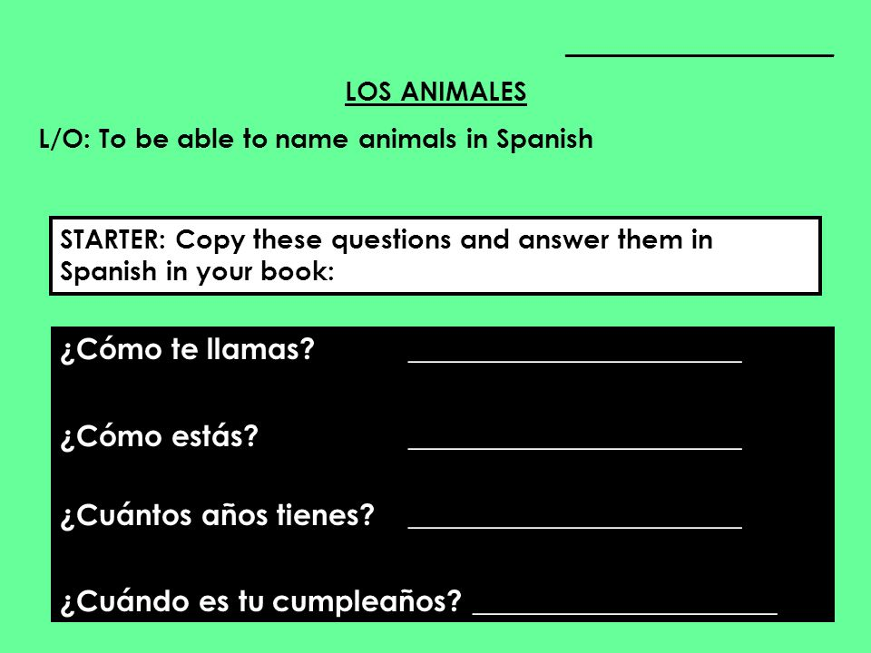 ____________________ LOS ANIMALES L/O: To be able to name animals in Spanish ¿Cómo te llamas? _______________________ ¿Cómo estás? ___________________