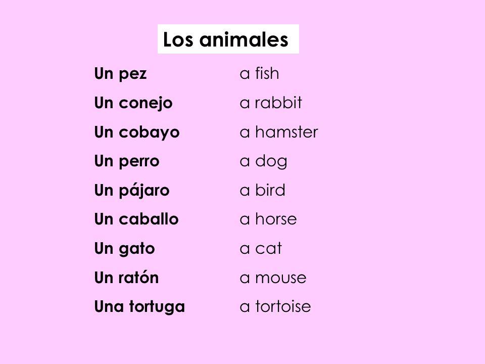 Los animales Un pez a fish Un conejo a rabbit Un cobayo a hamster Un perro a dog Un pájaro a bird Un caballo a horse Un gato a cat Un ratón a mouse Un