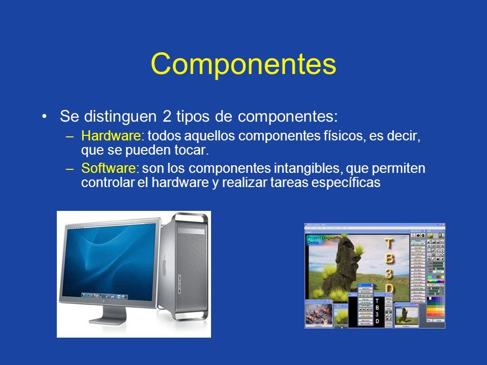 Se distinguen 2 tipos de componentes: –Hardware: todos aquellos componentes físicos, es decir, que se pueden tocar. –Software: son los componentes int