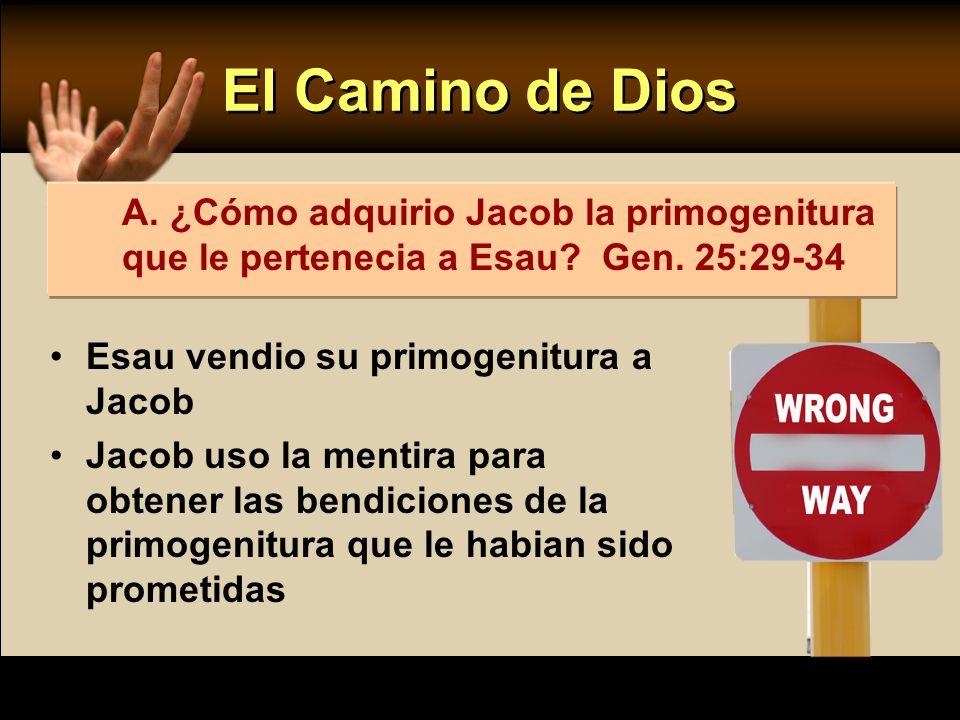 El Camino de Dios Esau vendio su primogenitura a Jacob Jacob uso la mentira para obtener las bendiciones de la primogenitura que le habian sido promet
