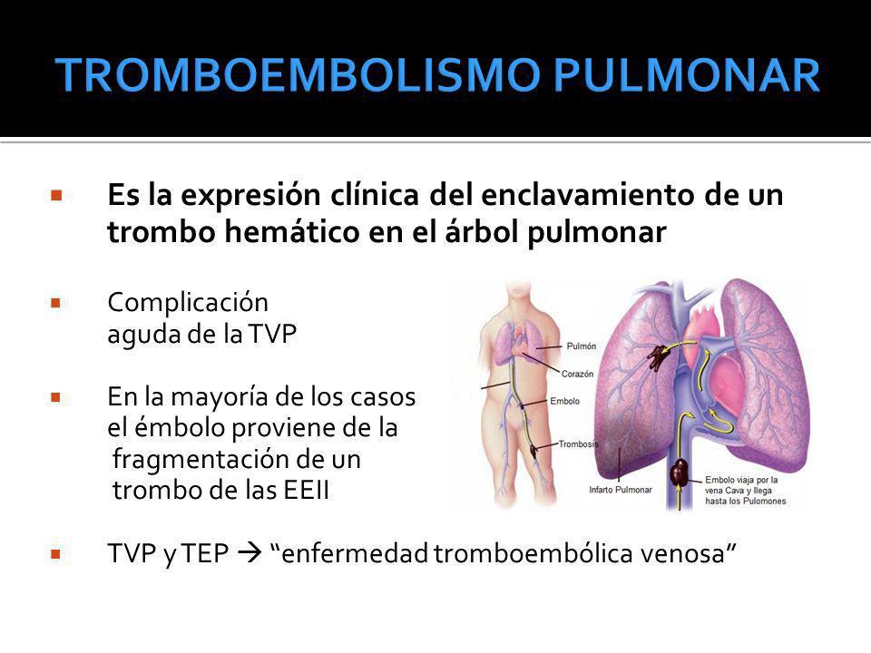 Es la expresión clínica del enclavamiento de un trombo hemático en el árbol pulmonar Complicación aguda de la TVP En la mayoría de los casos el émbolo