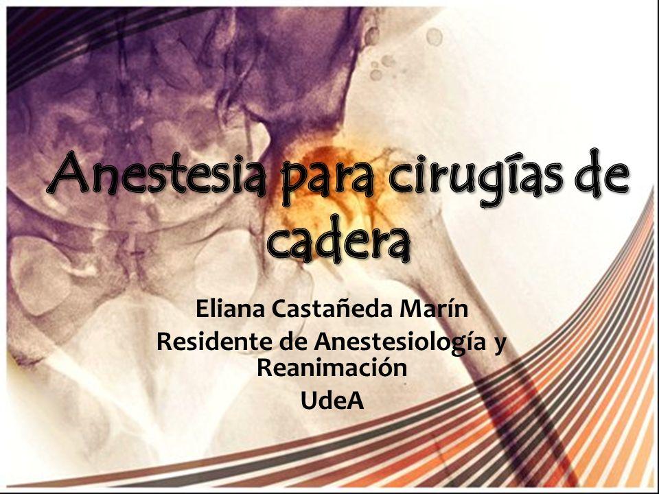 Generalidades Tiempo de la cirugía y desenlaces Técnica anestésica Complicaciones intraoperatorias Sangrado Síndrome de Cementación Analgesia Postoperatoria Conclusiones