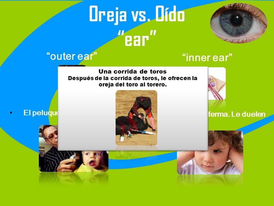 Oreja vs. Oído ear outer ear El peluquero le cortó la oreja. inner ear La niña está enferma. Le duelen los oídos. Una corrida de toros Después de la c