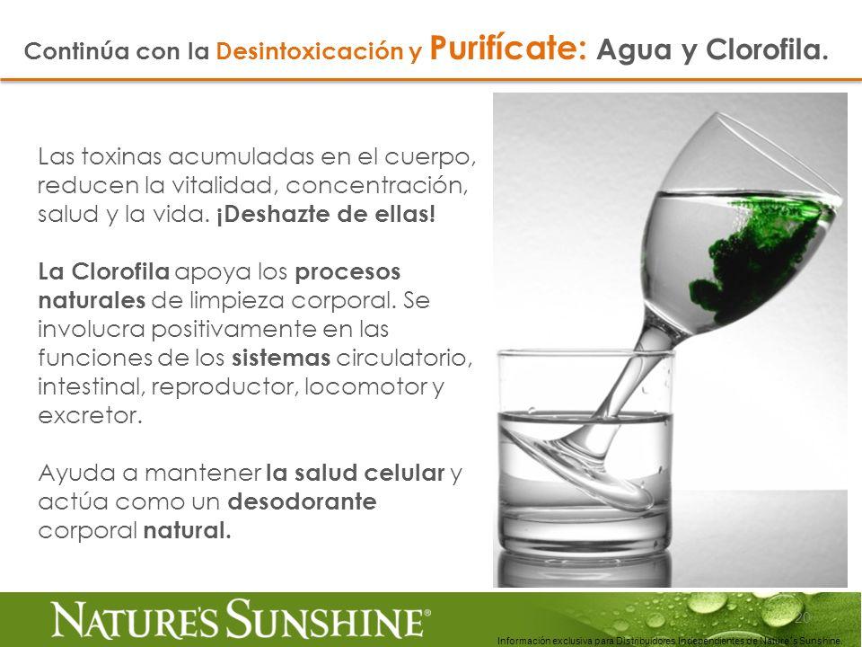 20 Información exclusiva para Distribuidores Independientes de Nature´s Sunshine.. Las toxinas acumuladas en el cuerpo, reducen la vitalidad, concentr