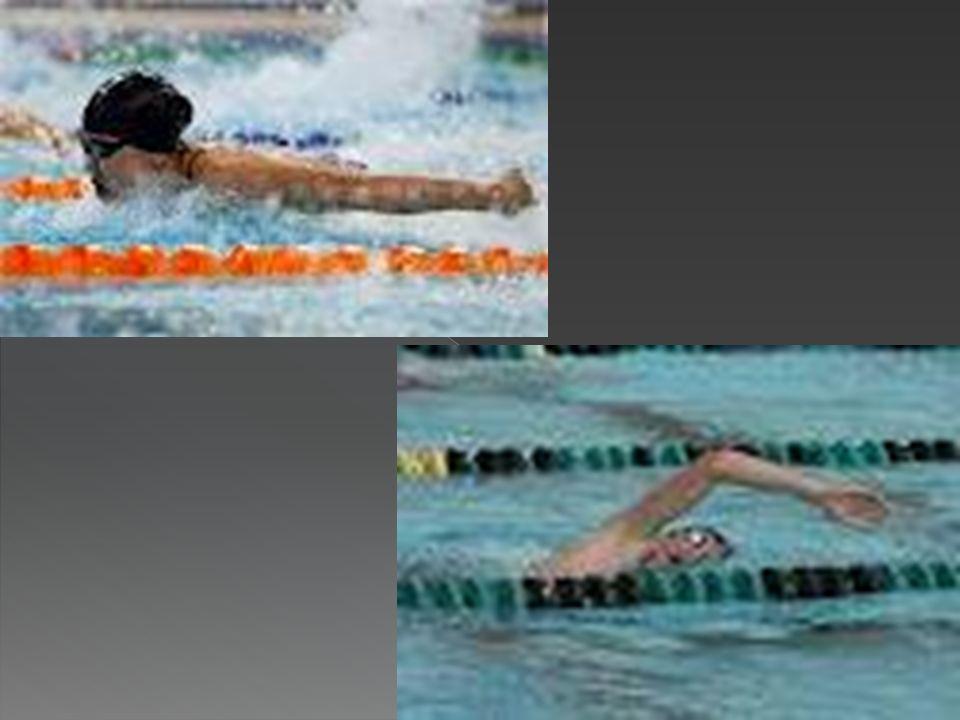 Mi juego Olimpico es la Natacion: En la era moderna, la natación de competición se instituyó en Gran Bretaña a finales del siglo XVIII. La primera org
