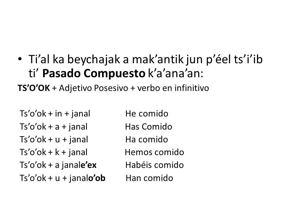 Tial ka beychajak a makantik jun péel tsiib ti Pasado Compuesto kaanaan: TSOOK + Adjetivo Posesivo + verbo en infinitivo Tsook + in + janal He comido